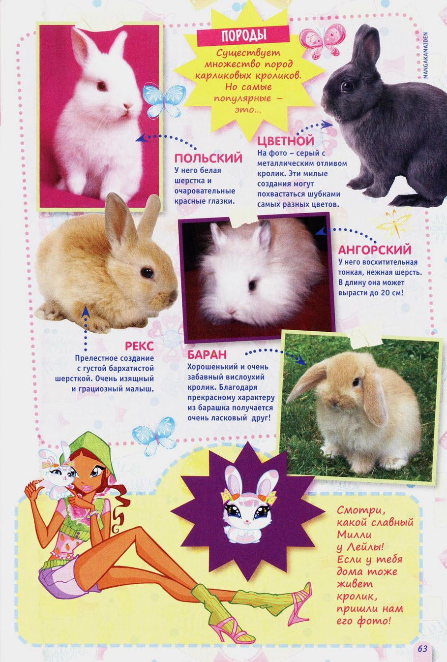 Комикс Винкс Winx - Неверное решение (Журнал Винкс №3 2011) - стр. 63