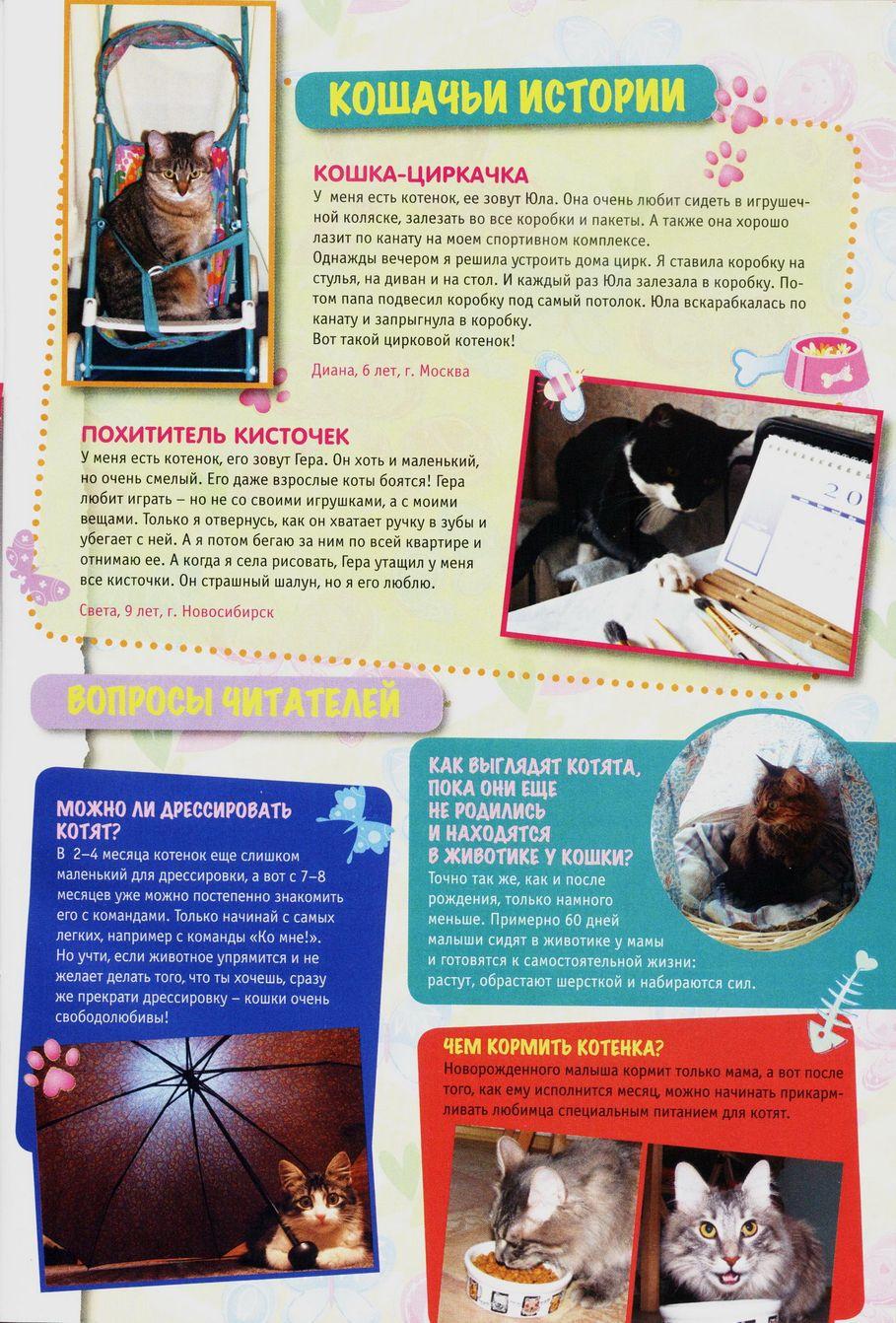 Комикс Винкс Winx - Волшебник Камуд (Журнал Винкс №6 2011) - стр. 13